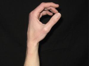 Good fret hand position 1 - https://supertonicguitar.com/wp-content/uploads/2018/01/guitar-good-fret-hand-position.png